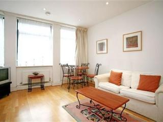 Central London apartment, in Covent Garden, walking distance to Oxford Street - London vacation rentals