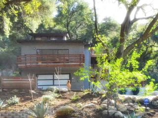 Topanga Canyon Retreat - Hidden L.A. Gem - Topanga vacation rentals
