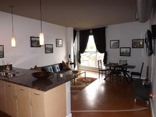 Beautiful 1 bedroom in the Heart of the Gas Lamp! - San Diego vacation rentals