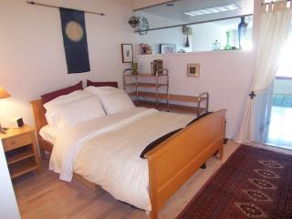 Beautiful apt. in North Waterf(NWPT2521) - San Francisco vacation rentals