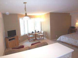 Beautiful apt. in North Waterf(NWPT4335) - San Francisco vacation rentals