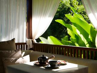 Deluxe Villa - Damai - Tranquility, beauty and great food - San Jose vacation rentals