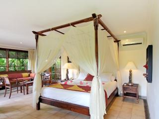 Superior Villa - Damai - Beauty, tranquility and great food - San Jose vacation rentals
