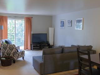Plaza Suites 3 Bedroom Condo - Seattle vacation rentals