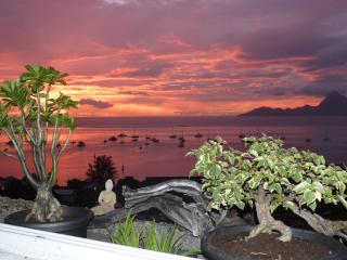 Balcon du Lotus - Tahiti vacation rentals