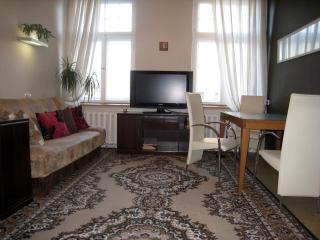5 bedroom /3 batroom for big group in Lacplesa str - Riga vacation rentals