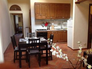 Apt 3bedrooms 5 Prs In The Centre Nearby Train St. - Florence vacation rentals