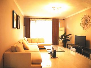 Homey 3 bedroom apartment in Beijing CBD - Hong Kong vacation rentals