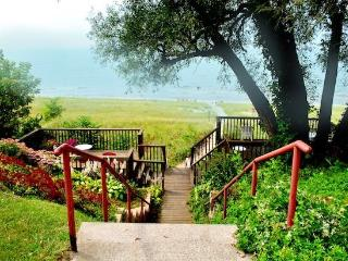 The Eagle - Weekly stays begin on Sunday - South Haven vacation rentals