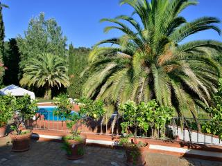 Countryside Villa close to the beach - Capezzano Pianore vacation rentals