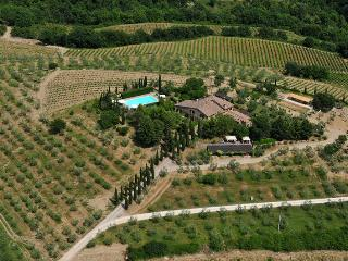 Castellina In Chianti - 81904001 - Castellina In Chianti vacation rentals