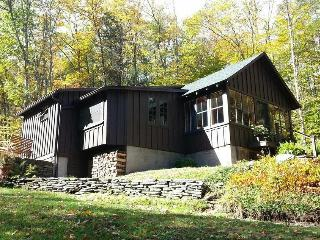 Charming Country Cabin by a Stream - Phoenicia vacation rentals