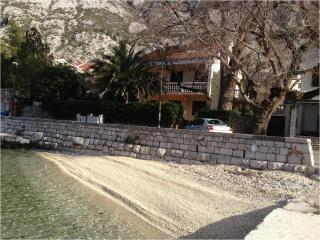 Apartment 5meters from sea, Kotor - Kotor vacation rentals