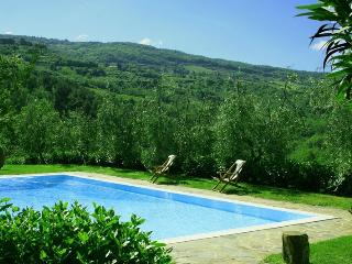 Greve In Chianti - 27120001 - Chianti vacation rentals