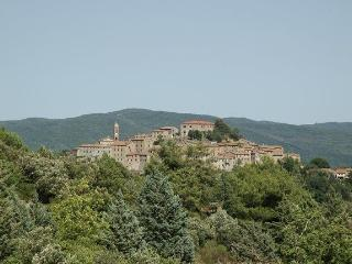 Casale Di Pari - 46865001 - Civitella Paganico vacation rentals