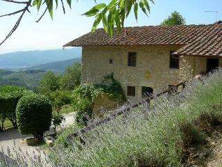 Florence - 62099001 - Florence vacation rentals