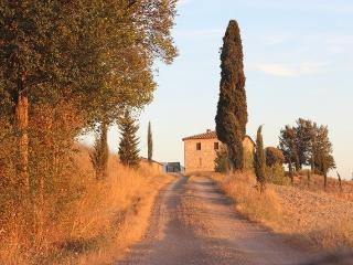Torrenieri - 64014001 - Val d'Orcia vacation rentals