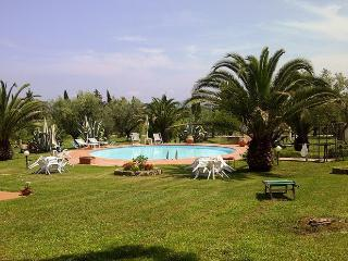 Suvereto - 77087004 - Suvereto vacation rentals