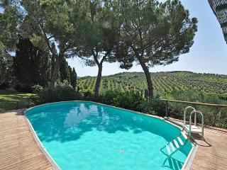 Marsiliana - 81151001 - Marsiliana vacation rentals