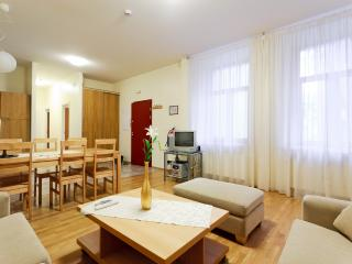 Elegant with Sauna in City Centre - Tallinn vacation rentals