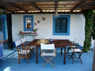 Casa Formosa (7 people), Comporta Alentejo, only 300m from the km-long sandy beach; surf school - Comporta vacation rentals