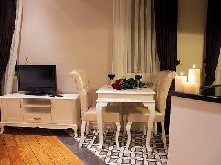 Centrally Located Studio Apartment - Istanbul vacation rentals