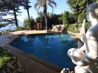 The White House 2 - Cannes vacation rentals
