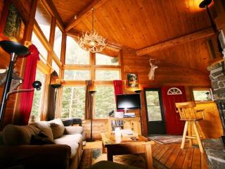 The Ultimate Cabin Experience! - Black Hawk vacation rentals