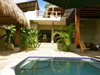 New Luxury Bali Style Villa at Playa Maderas - Casares vacation rentals
