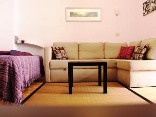 Great studio conveniently located - Puerto de la Cruz vacation rentals