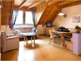 LLAG Luxury Vacation Apartment in Deggenhausertal - 807 sqft, comfortable, natural, quiet (# 4948) - Deggenhausertal vacation rentals