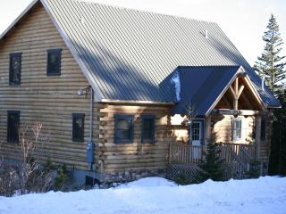 Luxury Secluded Mountain Cabin near Breckenridge - South Central Colorado vacation rentals