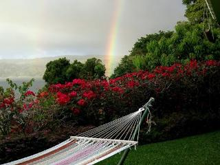 The best view on historic Lake Arenal, Costa Rica! - Province of Alajuela vacation rentals