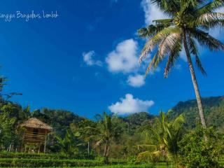 Lombok Hut with Waterfall and Rice Paddy Views - Pemenang vacation rentals
