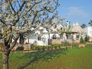 'l'Ulivo' (the Olive tree) - Alberobello vacation rentals