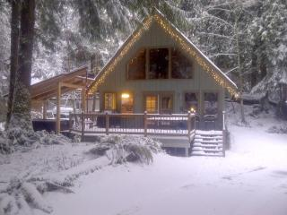 Mt. Baker Rim Cabin #99 - Charming Woodsy Cabin with a hot tub! - Glacier vacation rentals