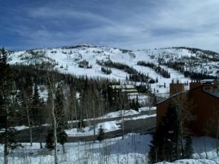2 Story Condo walk to the lifts - Brian Head vacation rentals