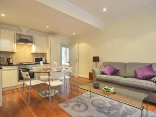 Embankment House - London vacation rentals