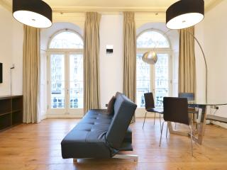 (A) Hyde Park House - London vacation rentals