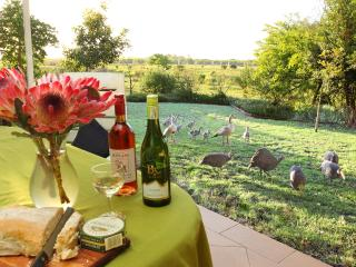 40 Montage - Self Catering Holiday House - sleeps 8 - Sedgefield vacation rentals