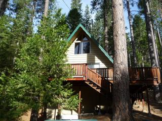Relaxing 2BR Cabin W/Loft in 'Bear Valley' - Walk to Blue Lake Springs Lake & Country Club WIFI - Arnold vacation rentals