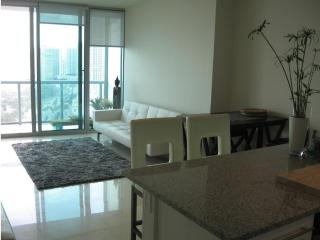 Downtown Miami Panoramic Views - Miami vacation rentals