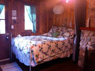 Ludington Cottage- Sleeps 6 - Ludington vacation rentals