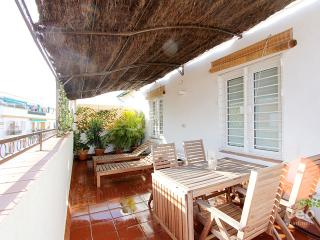 Mejías Terrace. 2 bedrooms and private terrace - Seville vacation rentals