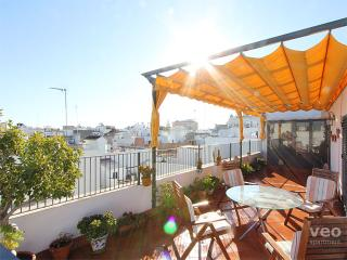 Monsalves Terrace. 2 bedrooms for 8, terrace - Seville vacation rentals