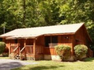 MF 10 - Pigeon Forge vacation rentals