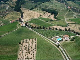 MALVASIA - Pontassieve vacation rentals