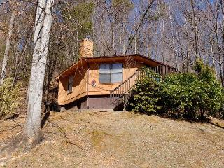 Gatlinburg Cabin in the mountains  RELAXATION STATION 513 - Sevierville vacation rentals