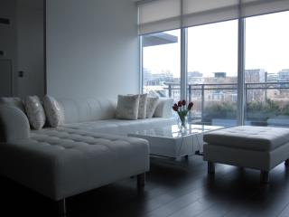 GRAND LUXURY DOWNTOWN TOWN HOUSE - Toronto vacation rentals