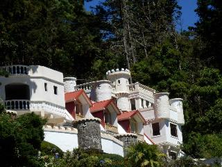 Apartments in a Castle in the woods - Barva vacation rentals